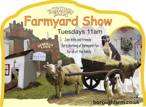 C) farmyard A board top
